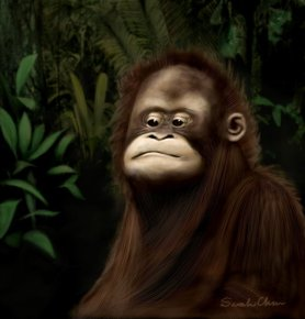 Gorilla Digital painting completed