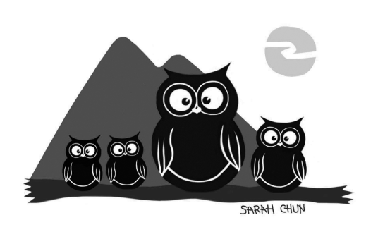 Mountain Night Owls
