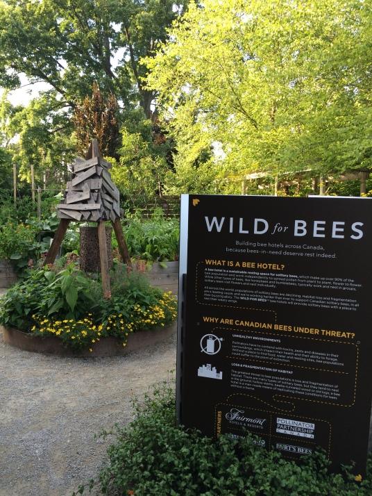 Edwards Gardens, Toronto