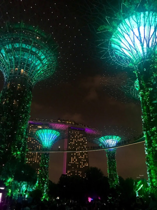 Supertree Grove, Gardens by the Bay in Singapore